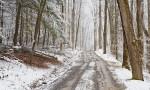 Winter Smoky Mountain road