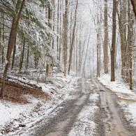 Gallery: Greenbrier in Winter