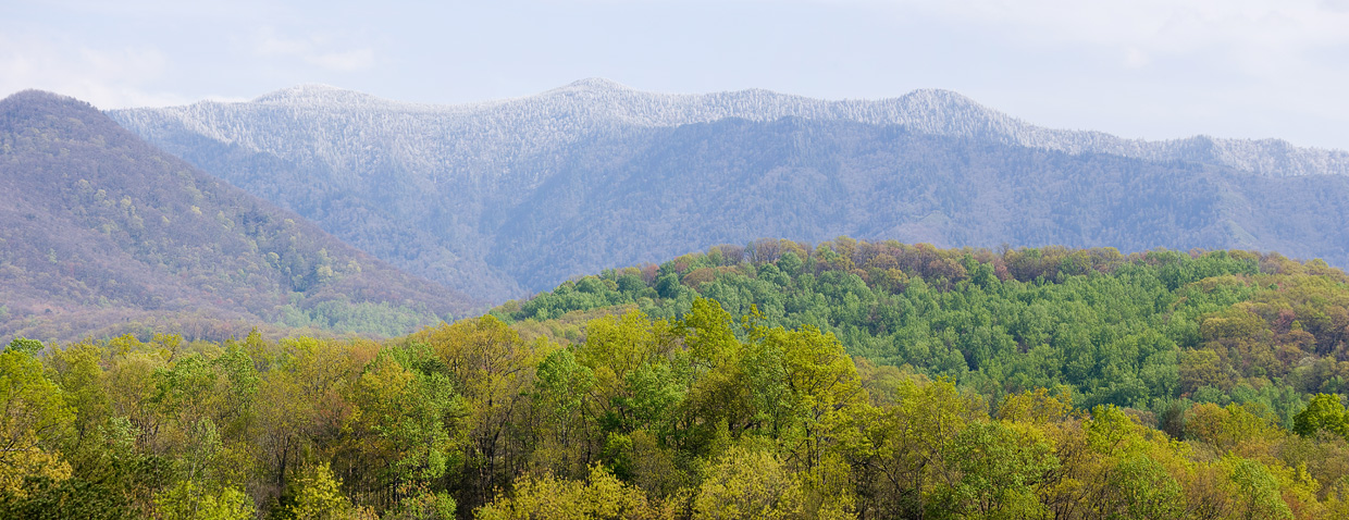 Spring Snow on Mt. LeConte