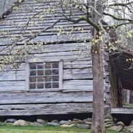 Along the Roaring Fork: Bud Ogle Farm