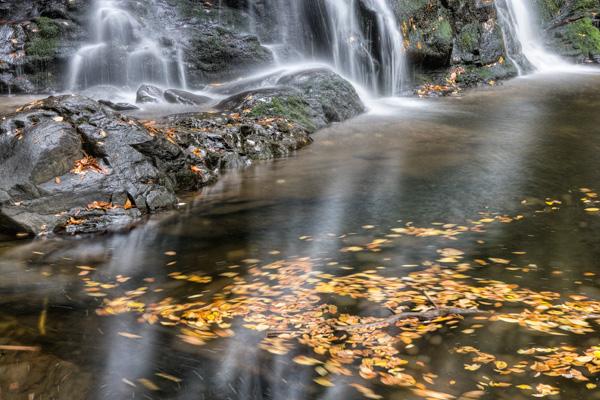 Featured Photo: Spruce Flat Falls