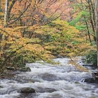 Featured Photo: Color Cascade