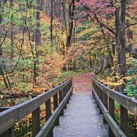 Footbridge to Heaven