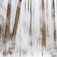 Wordless Wednesday: Impressionistic Snow Blur