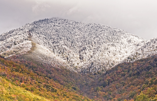 Ode to Mount LeConte