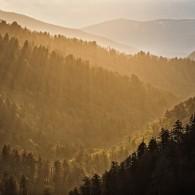 Miles Away on Monday: Morton Overlook