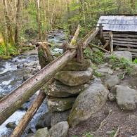 Walking the Ogle Nature Trail