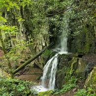 Favorite Trails: Baskins Falls