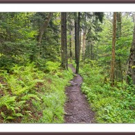 Miles Away on Monday: A Trail to Serenity