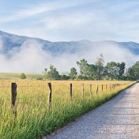 Featured Photo: Cades Cove Morning