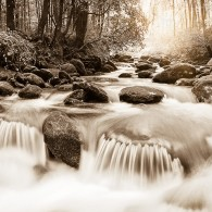 The Roaring Fork in Black and White