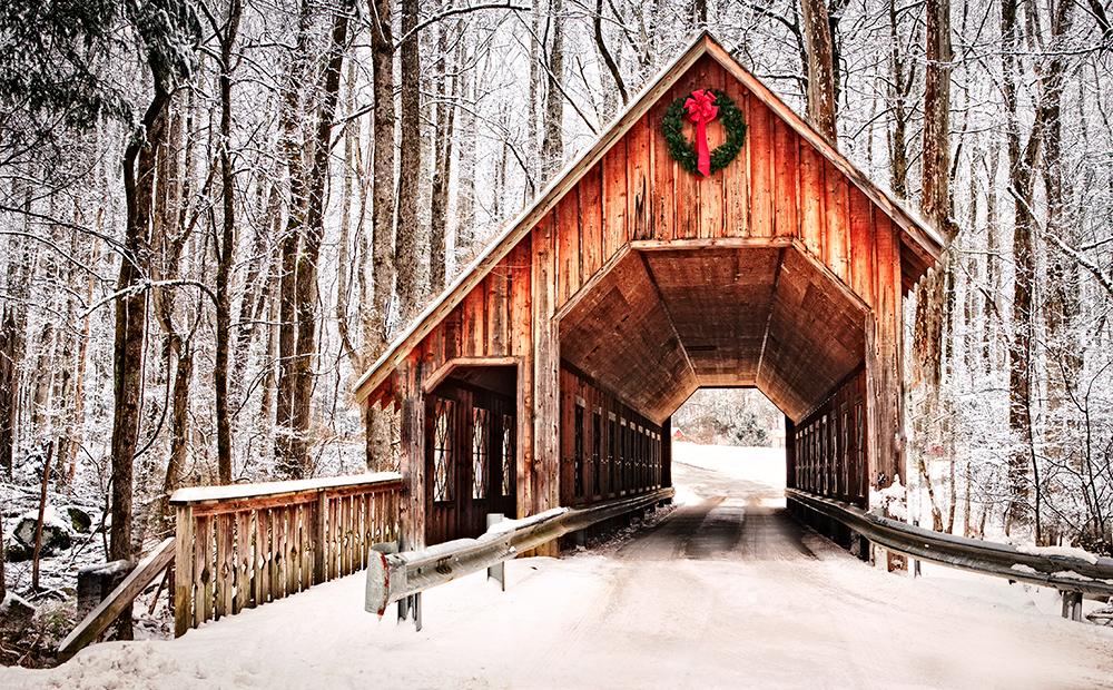 Featured Photo: Smoky Mountain Christmas