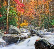 Autumn's Fire