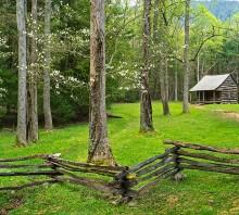 Dogwood Home