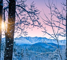 Mt Leconte Winter