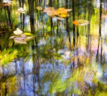 Smoky Mtn Monet